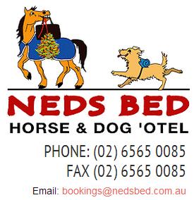 Neds Bed Horse-O-Tel