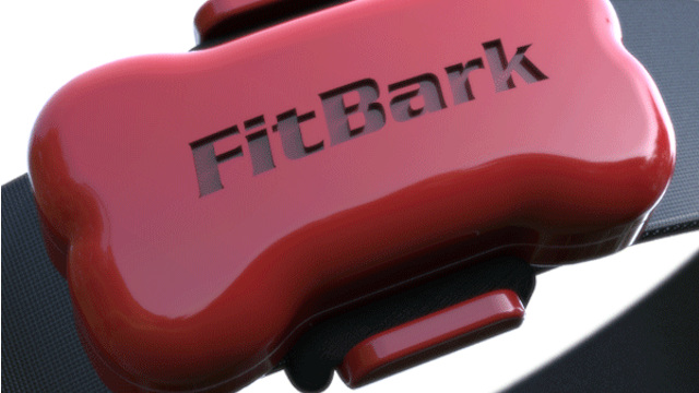 FitBark - Keep An Eye On Your Pet's Activity