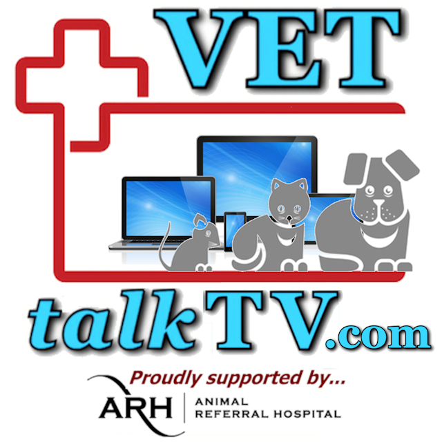 VETtalk TV for Vets